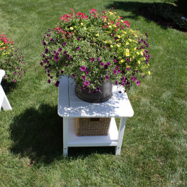 Malibu Outdoor 24 in Square End Table