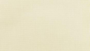 trex-5472-birds-eye