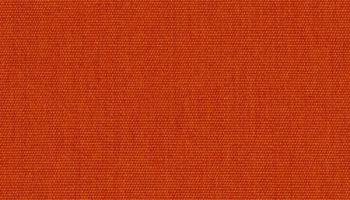 bg-54010-canvas-rust