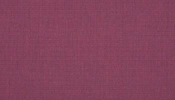 f-canvas-iris