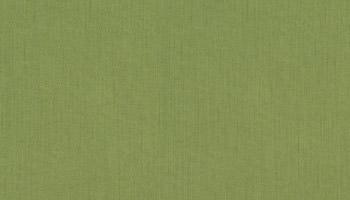 f-spectrum-cilantro