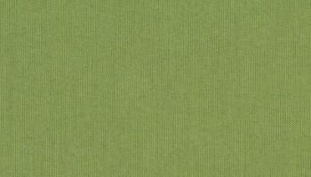 spectrum-cilantro-48022c +$107.98