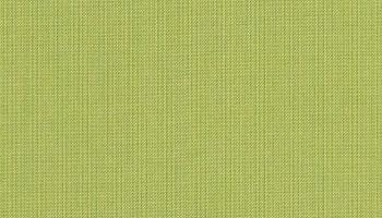f-spectrum-kiwi +$82.00